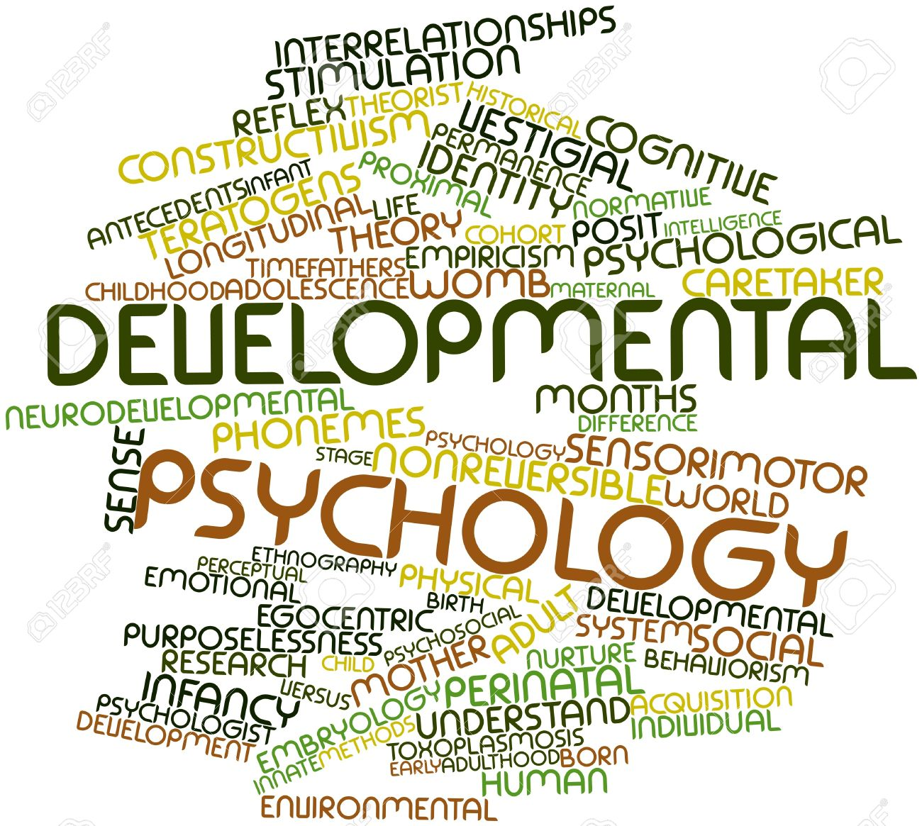 Developmental Psychology Examples